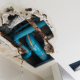 water damage services evergreen co